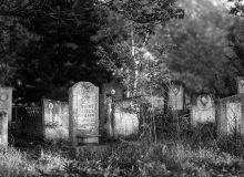 Почти цяло едно поколение е родено в това село... заминават в Чехословакия през 1950 г.